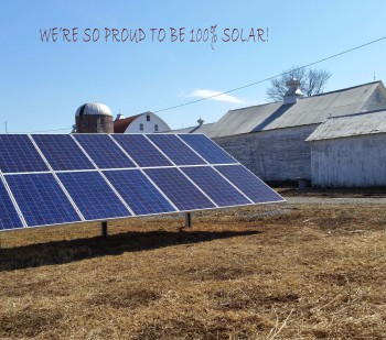 Solar panels on 5Spoke Farm with copy